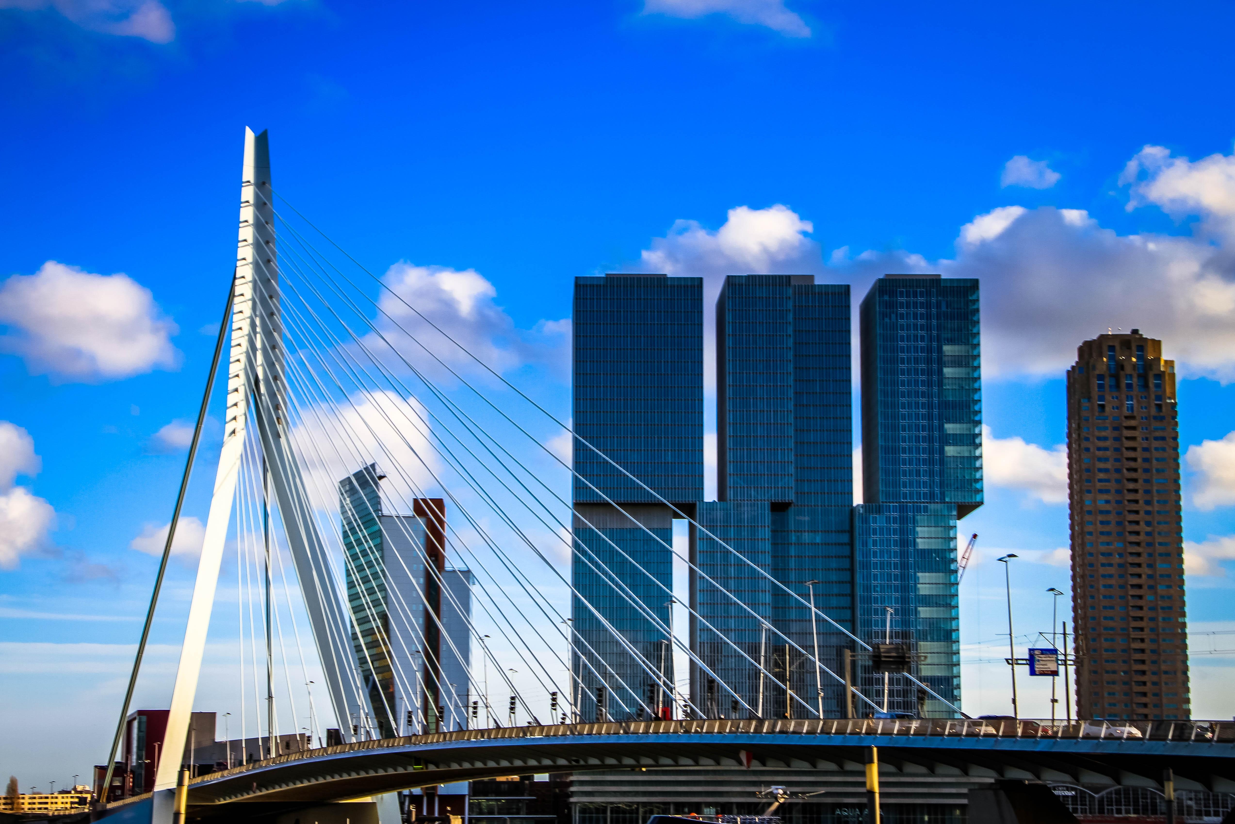 Onderzoek voor Gemeente Rotterdam